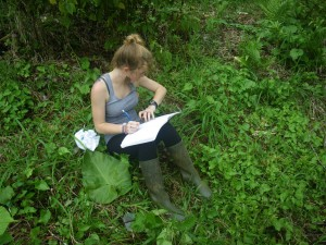 Counting Leaf-Cutter ants at ITEC